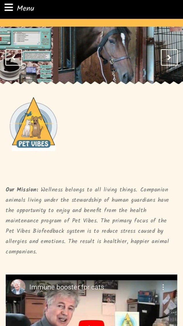 Petvibes Alternative Health Care for Pets Allergy Elimination New York Phone